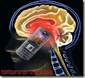 cerveau_portable